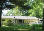 Foreclosed Home en N BRANCH DR, Beaverton, MI - 48612