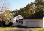 Foreclosed Home en W TOWNLINE RD, Saint Charles, MI - 48655