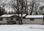 Foreclosed Home en S STRAITS HWY, Indian River, MI - 49749