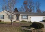Foreclosed Home en CUIVRE VALLEY DR, Troy, MO - 63379