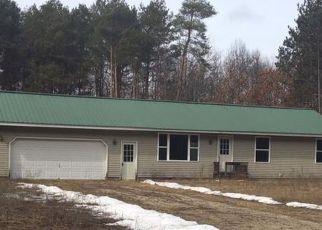 Foreclosure Home in Evart, MI, 49631,  WOODLAND DR ID: F2694984