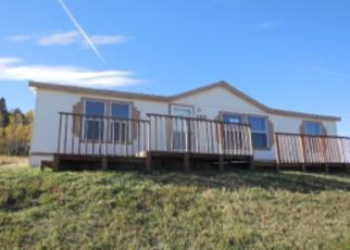Casa en ejecución hipotecaria in Teller Condado, CO ID: F3370067