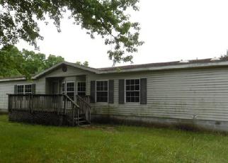 Casa en ejecución hipotecaria in Allegan Condado, MI ID: F3410278