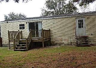 Casa en ejecución hipotecaria in Levy Condado, FL ID: F3612845