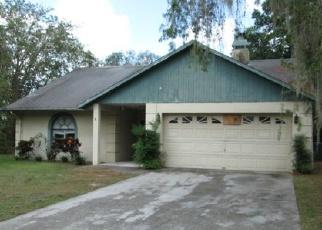 Casa en ejecución hipotecaria in Brandon, FL, 33511,  HOLLISTER PL ID: F3825901