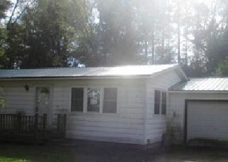 Casa en ejecución hipotecaria in Clare Condado, MI ID: F3856899