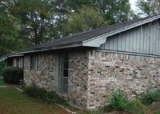 Casa en ejecución hipotecaria in Polk Condado, TX ID: F3867881