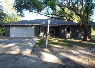 Foreclosure Home in Lutz, FL, 33549,  BARTON DR ID: F3932580