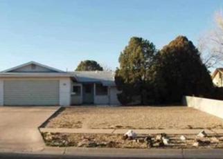 Casa en ejecución hipotecaria in Roswell, NM, 88201,  TWIN DIAMOND RD ID: F3966643