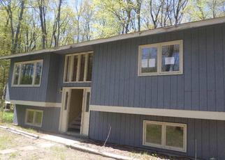 Casa en ejecución hipotecaria in Emmet Condado, MI ID: F3992377