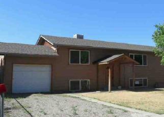 Casa en ejecución hipotecaria in Fruita, CO, 81521,  W ROBERSON DR ID: F4002361