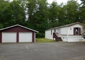 Casa en ejecución hipotecaria in Mason Condado, WA ID: F4003333