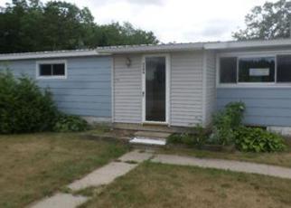 Casa en ejecución hipotecaria in Emmet Condado, MI ID: F4015849