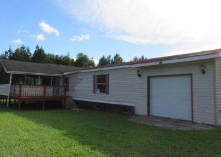 Casa en ejecución hipotecaria in Dorchester Condado, SC ID: F4037049