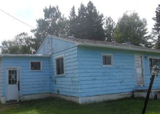 Foreclosure Home in Langlade county, WI ID: F4042541