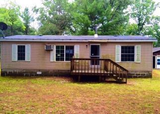 Casa en ejecución hipotecaria in Newaygo Condado, MI ID: F4050021