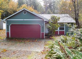 Casa en ejecución hipotecaria in Mason Condado, WA ID: F4053816