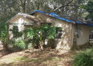 Casa en ejecución hipotecaria in Lake Condado, FL ID: F4061505