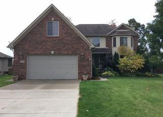 Casa en ejecución hipotecaria in Saint Clair Condado, MI ID: F4067248