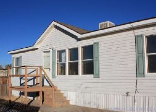 Foreclosure Home in Canon City, CO, 81212,  ROBBIE LN ID: F4074402