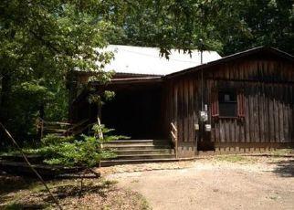 Casa en ejecución hipotecaria in Mcnairy Condado, TN ID: F4080591