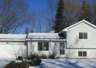 Casa en ejecución hipotecaria in Chisago Condado, MN ID: F4091208