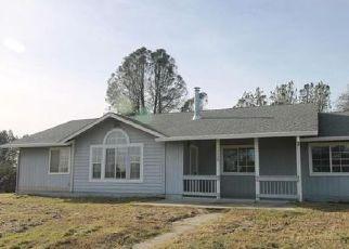 Foreclosure Home in Redding, CA, 96003,  ORLA LN ID: F4101920
