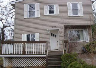 Casa en ejecución hipotecaria in Round Lake, IL, 60073,  N CLARENDON DR ID: F4105935