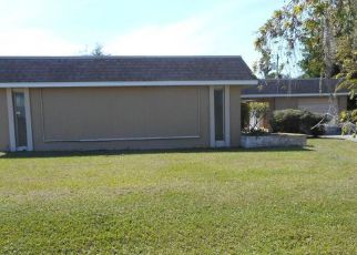 Foreclosure Home in Port Charlotte, FL, 33981,  DRIVER LN ID: F4112035