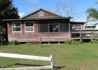 Casa en ejecución hipotecaria in Arcadia, FL, 34269,  SW HULL AVE ID: F4117120