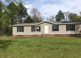 Casa en ejecución hipotecaria in Mcnairy Condado, TN ID: F4131526