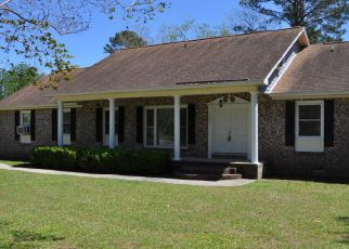 Foreclosure Home in Charleston, SC, 29406,  VISTAVIA RD ID: F4132819