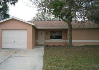 Casa en ejecución hipotecaria in Riverview, FL, 33579,  LARAWAY CT ID: F4143541