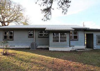 Casa en ejecución hipotecaria in Walton Condado, FL ID: F4143556
