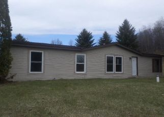 Foreclosure Home in Petoskey, MI, 49770,  HOWARD RD ID: F4147375
