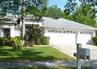 Foreclosure Home in Land O Lakes, FL, 34639,  WILLISTON LOOP ID: F4149814