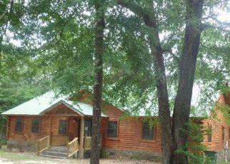Casa en ejecución hipotecaria in Dale Condado, AL ID: F4153527