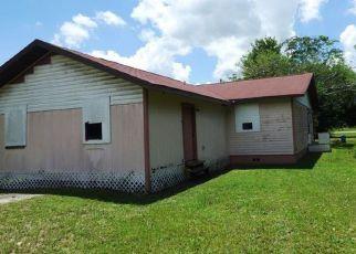Casa en ejecución hipotecaria in Arcadia, FL, 34266,  SW HIGHWAY 17 ID: F4161494