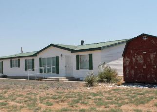 Casa en ejecución hipotecaria in Belen, NM, 87002,  MUCHACHA RD ID: F4189373