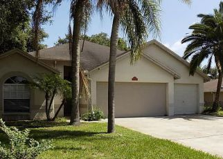 Foreclosure Home in Land O Lakes, FL, 34639,  RIVER ROCK DR ID: F4204521