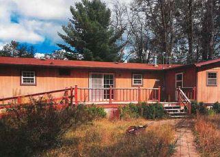 Casa en ejecución hipotecaria in Osceola Condado, MI ID: F4208489