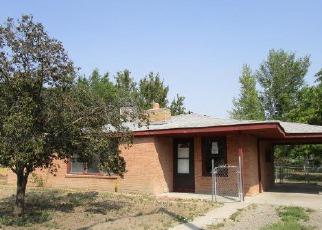 Casa en ejecución hipotecaria in Grand Junction, CO, 81501,  SPARN ST ID: F4209040