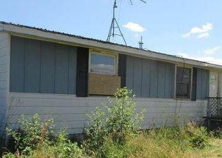 Casa en ejecución hipotecaria in Sanilac Condado, MI ID: F4210751