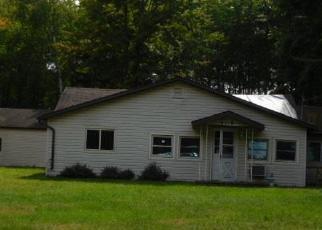 Casa en ejecución hipotecaria in Iosco Condado, MI ID: F4211178