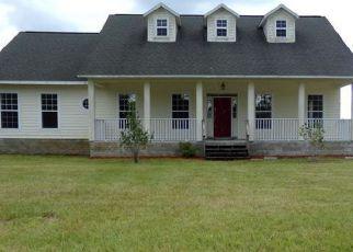 Casa en ejecución hipotecaria in Levy Condado, FL ID: F4227258