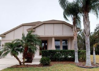 Foreclosure Home in Land O Lakes, FL, 34637,  BILLOWY JAUNT DR ID: F4233946