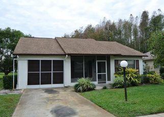 Casa en ejecución hipotecaria in New Port Richey, FL, 34654,  PAMPAS DR ID: F4234883