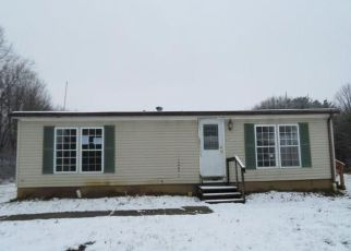 Foreclosure Home in Portage county, OH ID: F4236402