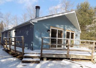 Foreclosure Home in Tobyhanna, PA, 18466,  COLONIAL LN ID: F4239167