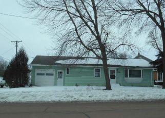 Casa en ejecución hipotecaria in Sibley Condado, MN ID: F4246685